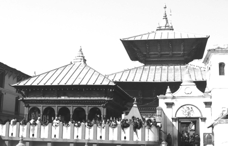 Pashuspatinath Temple