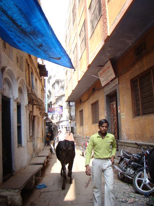 Gallis of Varanasi