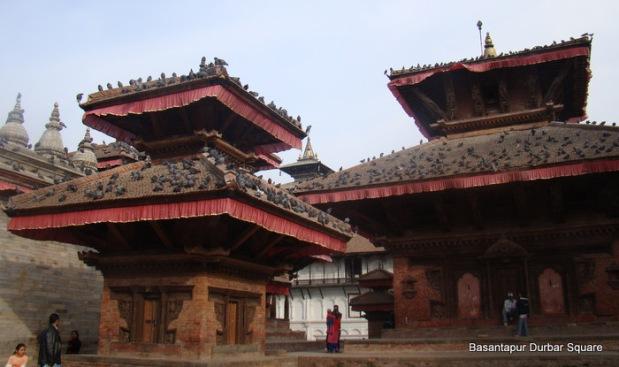 Temples and pigeons. Durbar Square, Kathmandu, Nepal