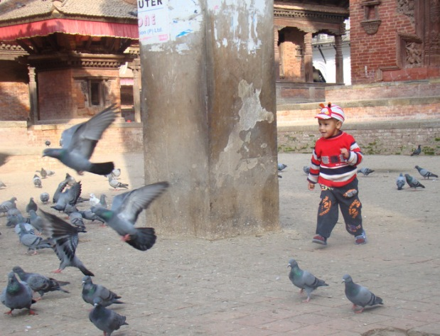 a kid playing with pigeons in Durbar Square, Kathmandu, Nepal